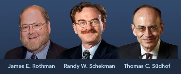 james-e-rothman-randy-w-schekman-and-thomas-c-s-dhof-win-2013-nobel-prize-for-physiology-or-medicine