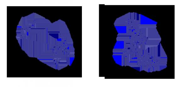 2. irudia: ezkerraldean, Lévyren hegaldi eredua; eskuinaldean browndar mugimendua. Wikimedia Commons.