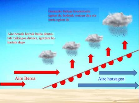 Fronte_beroa