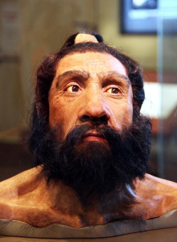 Washingtongo Natur Zientzien Museo Smithsondarreko Giza Jatorriko Aretoan erakusten den Neandertal gizon baten berregitearen irudia; Shanidar 1 fosilean (80-60 mila urte) oinarrituta dago berregitea (berregitea: John Gurche; argazkia: Tim Evanson)