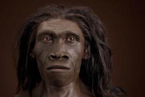 Homo erectus baten busto errealista, Natur Zientzietako Museo Smithsoniarra (Artista: John Gurxhe. Argazkia: Chipo Clark)