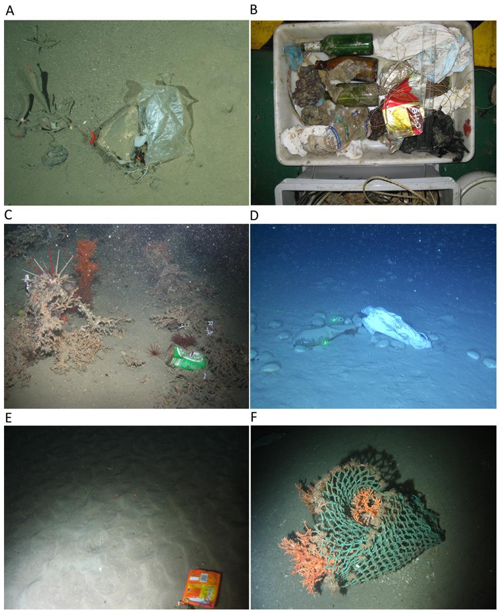 Ozeano nuklearrak: zaborra lehenago iritsi da, gizakia baino