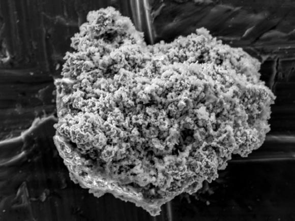 1. irudia: Kometen hauts partikula bat, mikroskopioan ikusia. (Argazkia: Takaaki Noguchi)