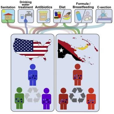 2. irudia: Ingurune faktoreek zeresana dute gizakiongan bizi diren bakterioen aniztasunean. (Argazkia: Martinez et al.)