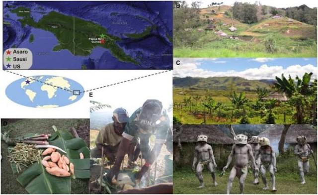1. irudia: Papua Ginea Berriko Asaro eta Sausi herriei buruzko irudi multzoa. (Argazkia: Martinez et al.)