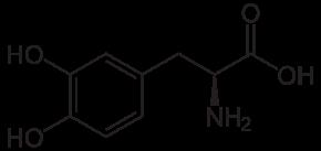 2. irudia: L-DOPAren egitura kimikoa. (Argazkia: Wikipedia)