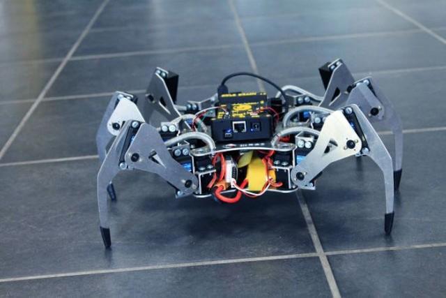 Irudia: Erle spider robota.