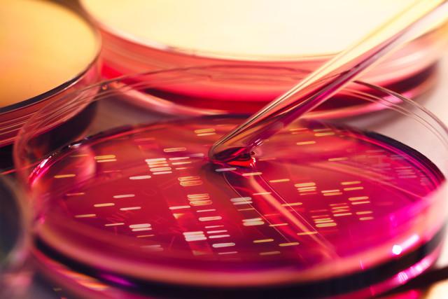 geneen aldarkotasuna ezagutzen