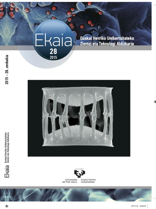 ekaia 28