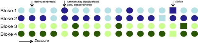 4. irudia: Esperimentu diseinua eta lau blokeen estimulu-sekuentziaren adibidea. (Irudiaren iturria: Thierry et al., 2009:4567 [moldatua])