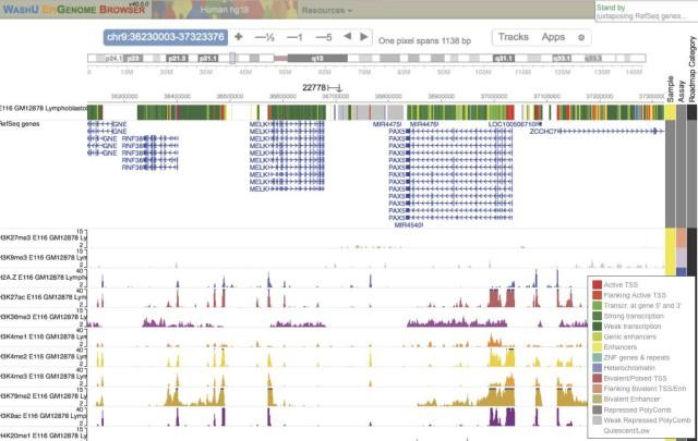 3. irudia: GM12878 zelulen 9. kromosomaren eremu bateko kromatina-egoerak, histonen modifikazioetan oinarrituta, Washingtoneko Unibertsitateko Epigenome Browser (http://epigenomegateway.wustl.edu/browser) nabigatzaile genomikoan bistaratua. Kromatina-egoera funtzionalak kromosomaren ideogramaren azpiko lehen panelean ageri dira, kolore desberdinetan (irudiaren barruko laukian, kolore bakoitzari dagokion egoera funtzionala). Bigarren panelean, eremu horretan identifikatuta dauden geneak. Hortik behera, esperimentuetan behatutako histonen modifikazioen maiztasuna posizio genomiko bakoitzean. Adibidez, H3K27ac marka (3. histonaren 27. posizioan dagoen lisina aminoazidoaren azetilazioa) goiko panelean gorriz adierazitako transkripzioaren hasierarekin uztartu da (PAX5 genearen hasieran ikus daiteke eremu gorri zabala).