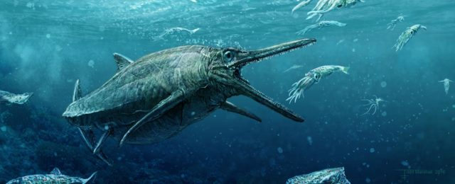 1. irudia: Fosilean oinarrituta, badirudi hauxe zela Storr Lakuetako Munstroaren itxura. (Argazkia: Todd Marshall, Edinburgoko Unibertsitatea)