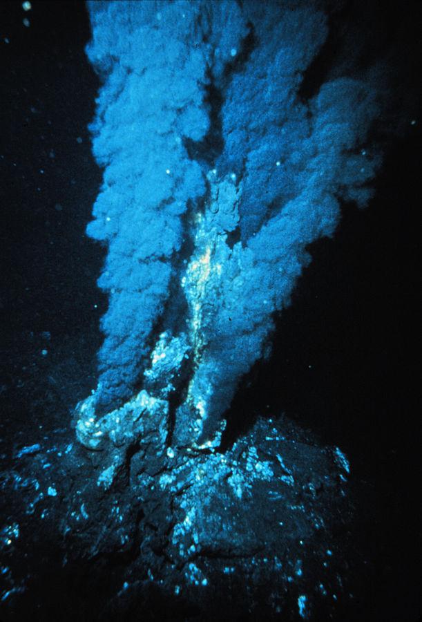 2. irudia: Tximinia hidrotermala, Ozeano Atlantikoan. Halakoak izan zituen LUCAk balizko bizitoki. (Argazkia: P. Rona- NOAA Photo Library)