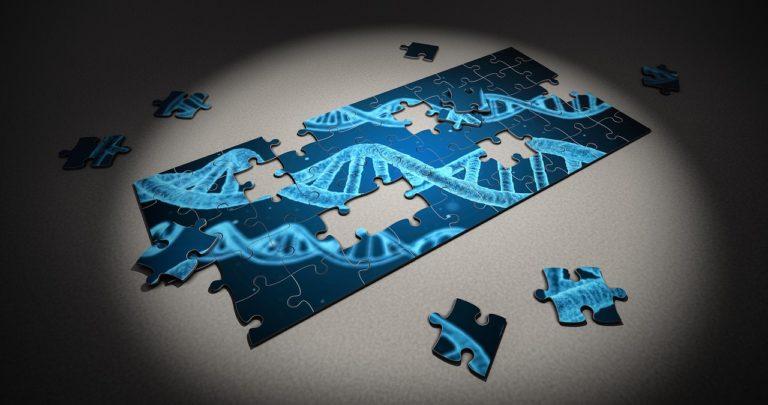 Geneen sekretua argitzeko, 42 geruzatako mapa