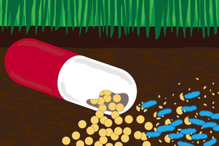 Antibiotikoa jateko gai diren bakterioen trikimailua