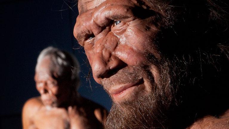 Klima eta neandertalen amaiera: aspaldiko eztabaida azaleratu da berriro