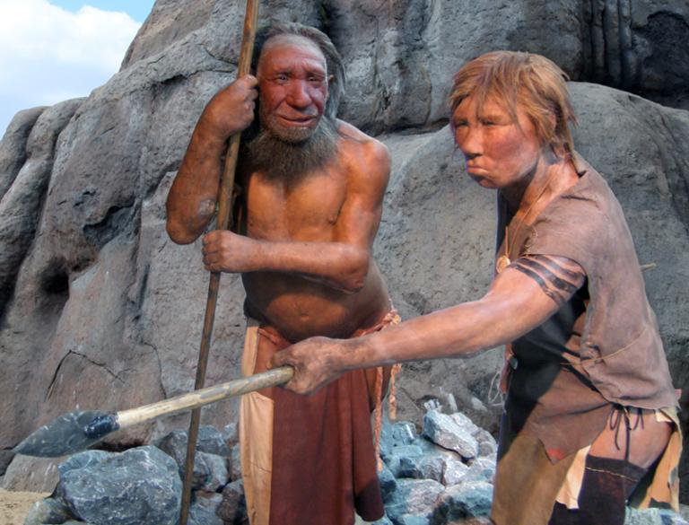 Neandertalen arnasketa sistema argitu dute, toraxaren berreraiketari esker