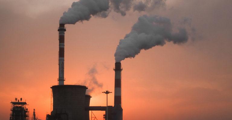 Karbono dioxidoa jateko gai den bakterioa lortu dute laborategian