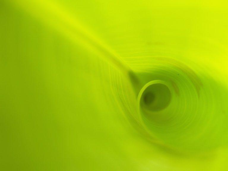 Koloratzaile organikoz dopaturiko L-zeolita antena material luminiszente gisa