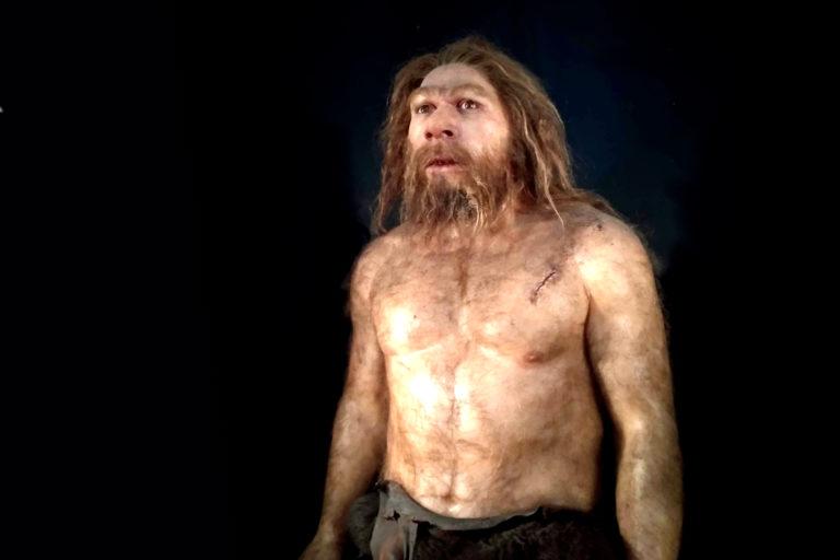 Neandertalen eta itsasoaren arteko harreman estua azaleratu dute