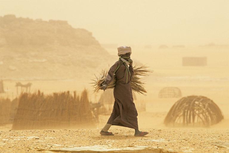 Saharako hautsa: ederra, bizi emailea eta hiltzailea